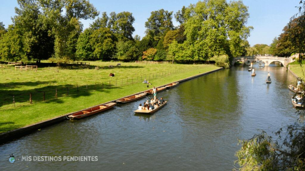 Punting en el río Cam (Cambridge, Inglaterra)