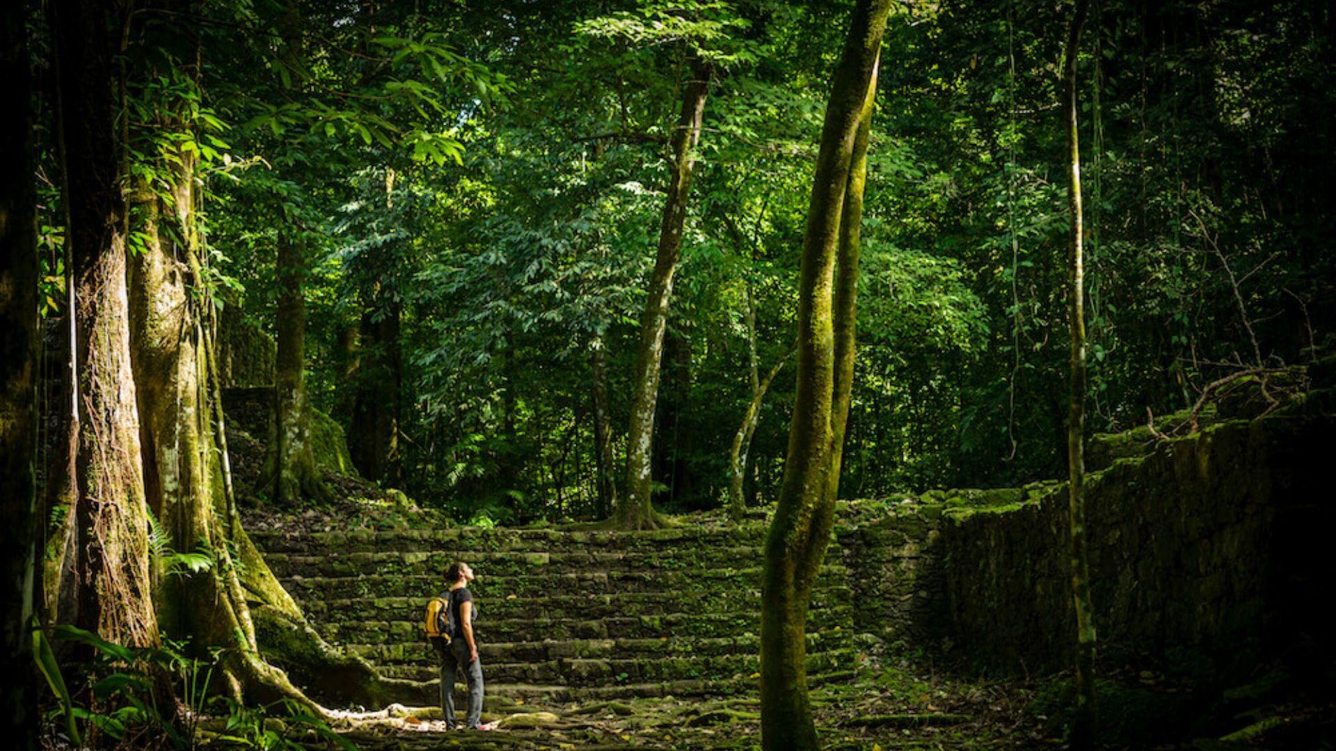 5 pasos para viajar de forma sostenible