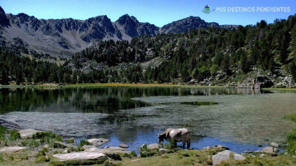 Estany de Pessons (Encamp, Andorra)