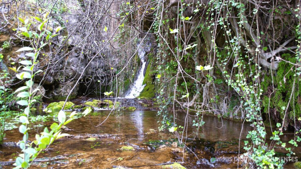Cascada del Molino (Cortes de Pallás, Valencia)